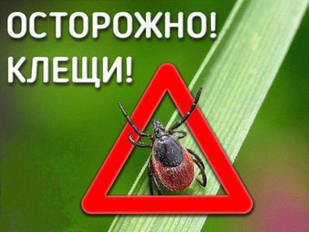 Берегите себя! Осторожно, клещи!